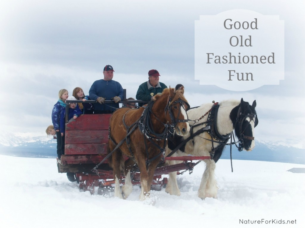 sleigh ride nature for kids 2