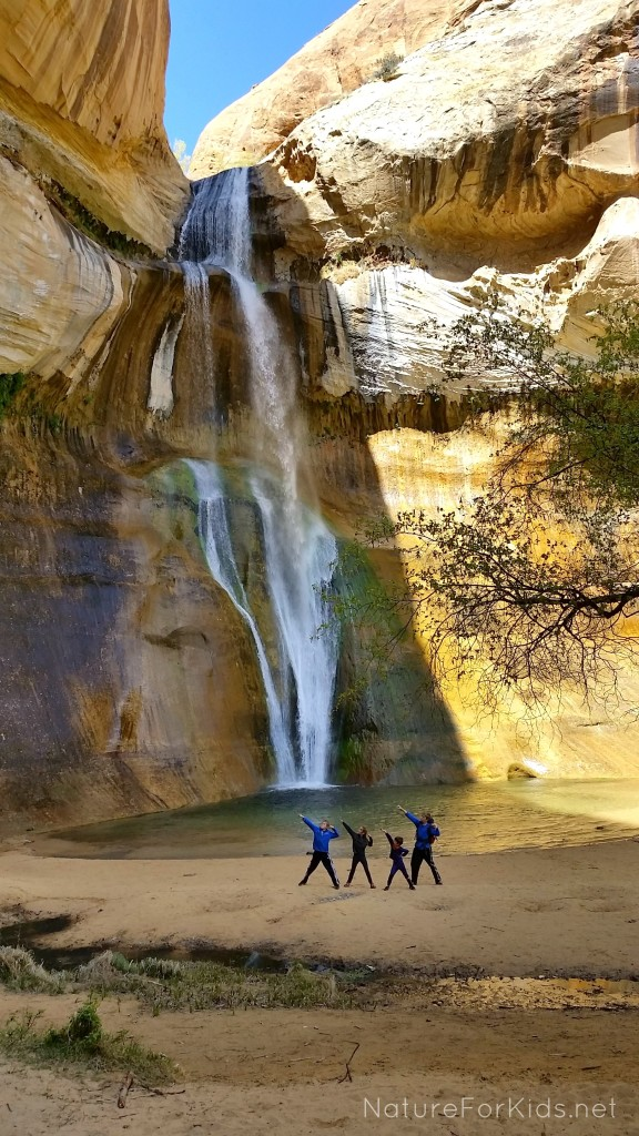 calf creek destination