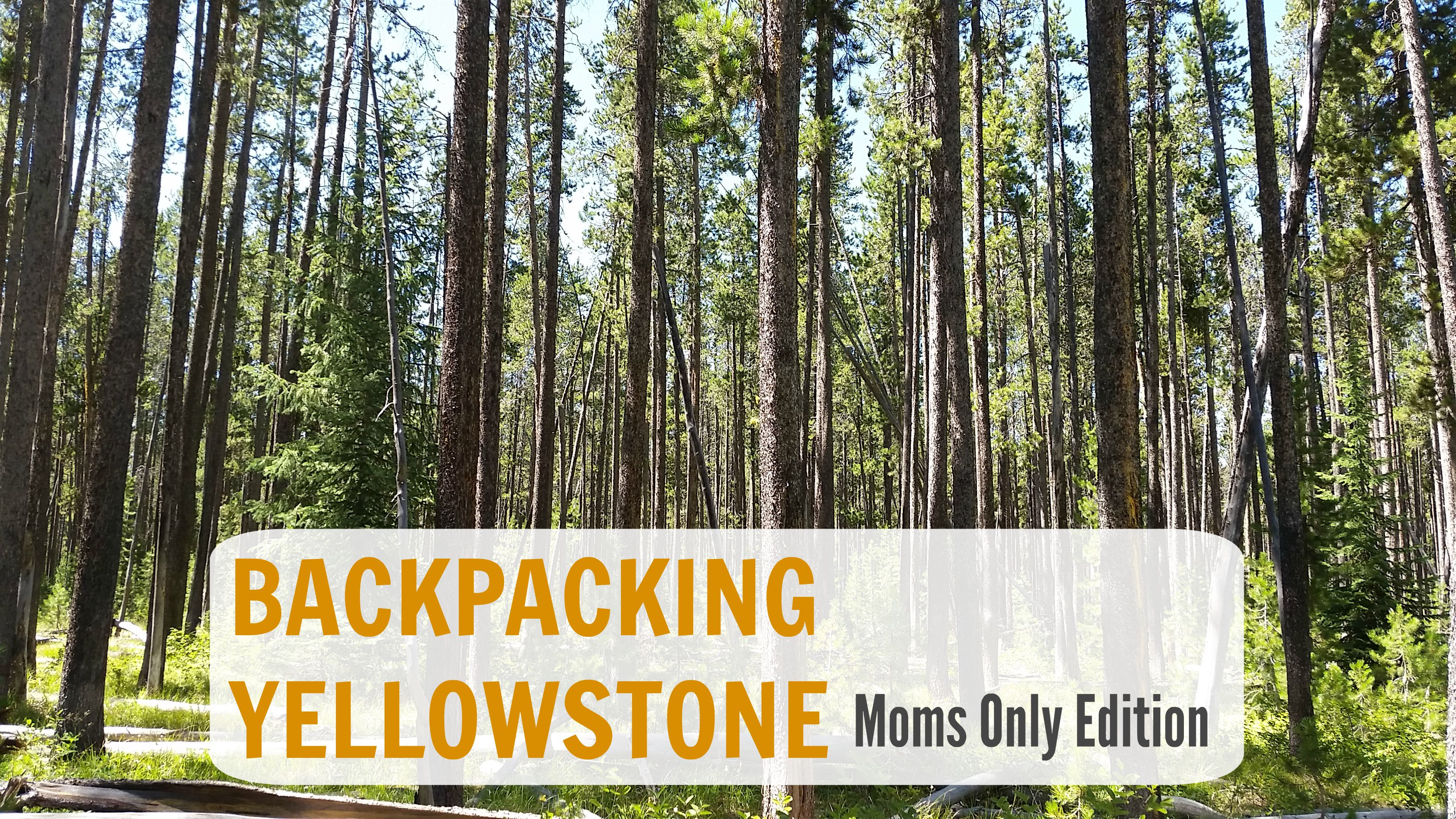 Backpacking In Yellowstone – Moms Only Edition