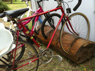 bike rack tree stump