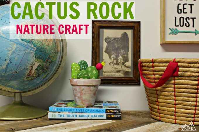 Rock Cactus – A Simple Nature Craft For Kids