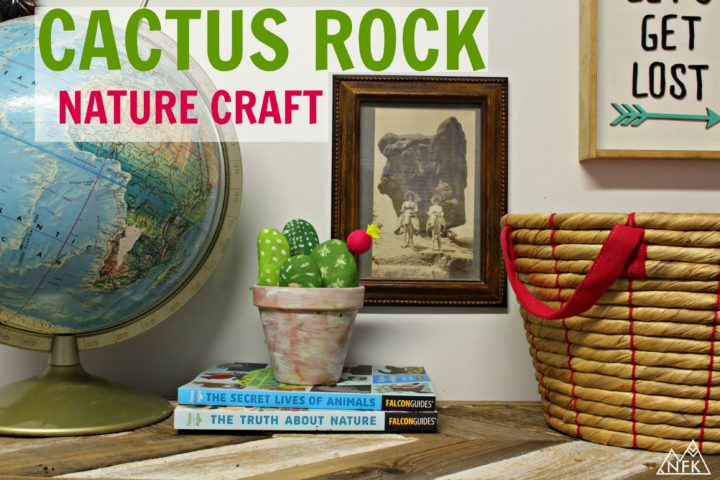 CACTUS ROCK NATURE CRAFT