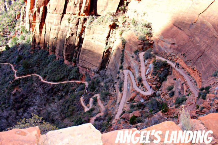 scout lookout to angels landing